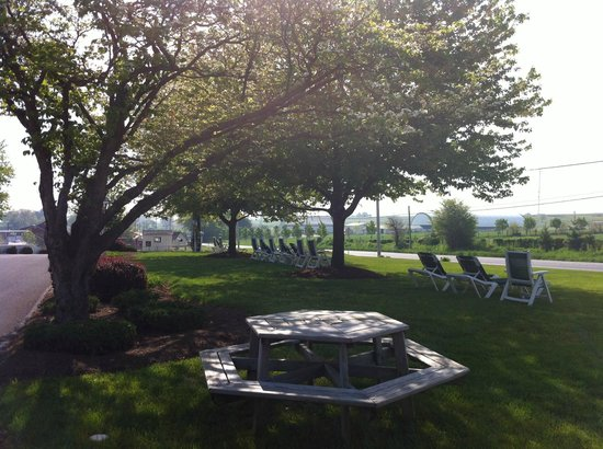 Amish Country Motel: Front-lawn-side view-Amish-Country-Motel-in-Bird-in-Hand-PA