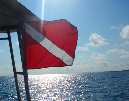 Sea Ventures Dive Center: dive flag flying high!