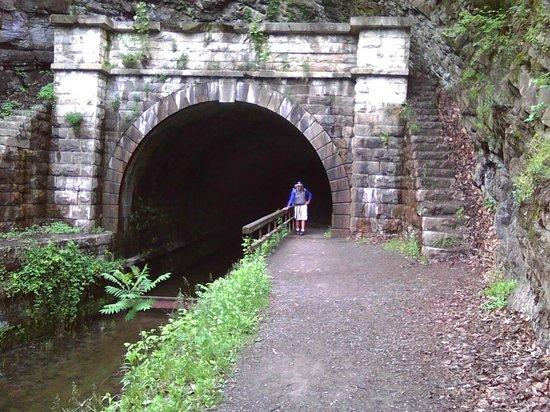C&O Canal - Paw Paw Tunnel : Western entrance near highway