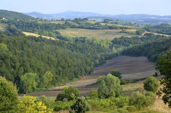 Agriturismo Renello: View of Tuscany from Renello