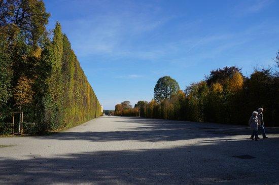 Gärten von Schönbrunn: Schlosspark