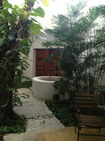 Mi Casa en Cozumel : New pool courtyard - Mi Casa Cozumel