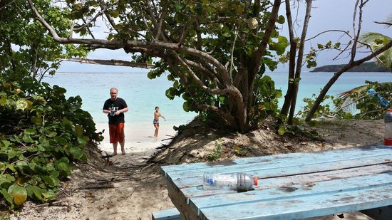 Flamenco Beach Campground : A view from our picnic table.