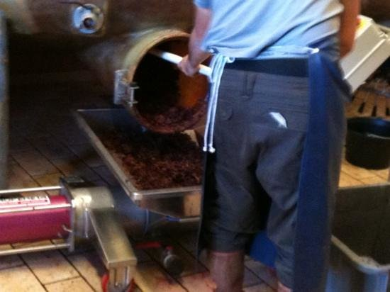 Paris Wine Day Tours : Removing the grape skins for a 2nd press.