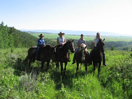 Driggs, ID: Dry Ridge Outfitters Horseback Rides