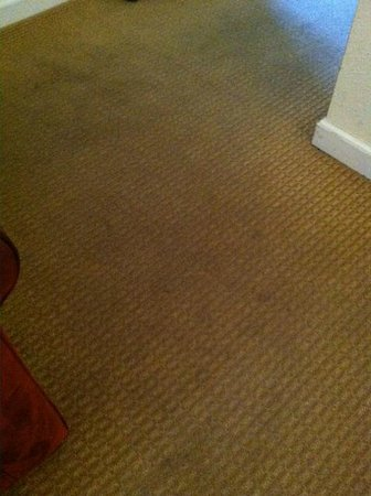 West Sonoma Inn & Spa: wouldn't want to walk on this carpet without my shoes