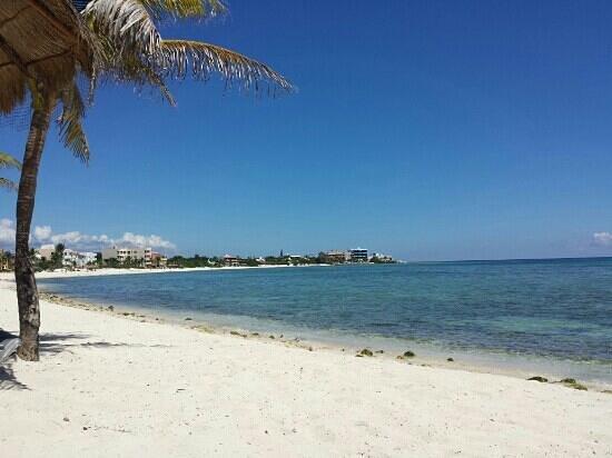 Del Sol Beachfront Hotel : plage de l hotel