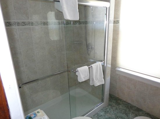 Albert Stevens Inn: Large shower.