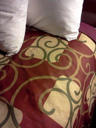 BEST WESTERN Royal Plaza Hotel & Trade Center: polyester bedspreads!
