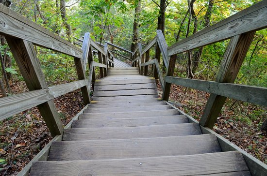 Chimney Rock State Park: Just a few of the many steps up