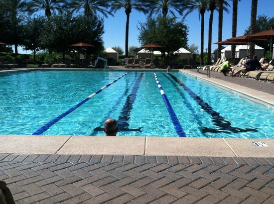Adult Lap Pool Picture Of The Westin Kierland Resort Spa Scottsdale Tripadvisor