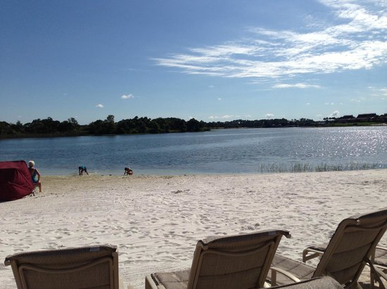 Disney S Grand Floridian Resort Spa White Sand Beach Lovely