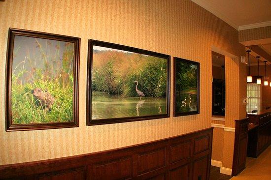 Best Western Plus Easton Inn & Suites: Local wildlife art in lobby