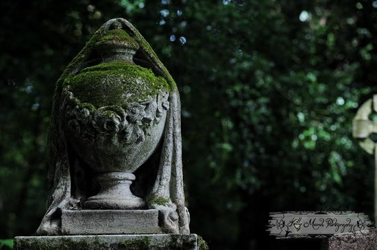 Highgate Cemetery: The West Cemetery tour.