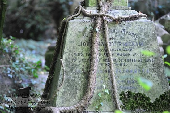 Highgate Cemetery: A tombstone from the West Cemetery tour.