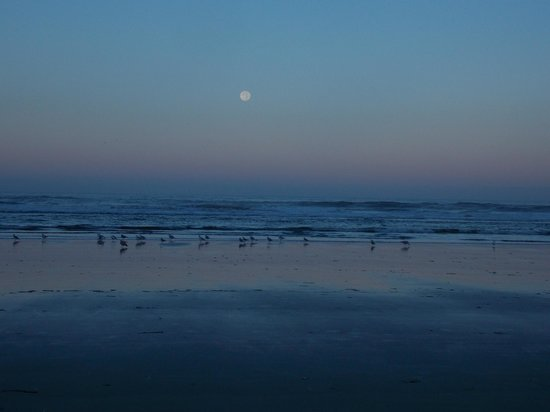 Cape Lookout State Park: Full Moon Set