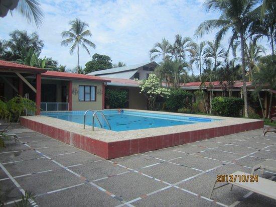 El Jardin: Largish pool for price range