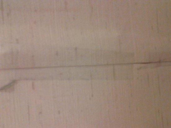 General Nelson Inn: taped wallpaper