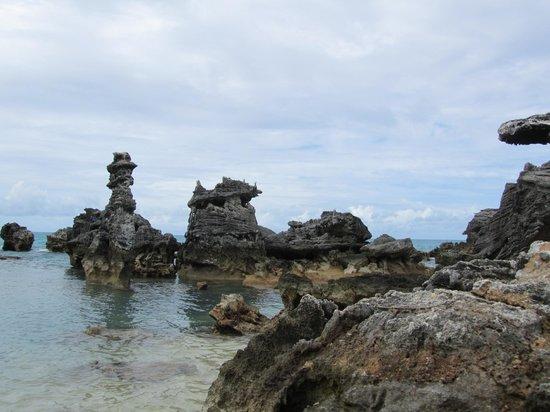 Coral formations at Tobacco Bay