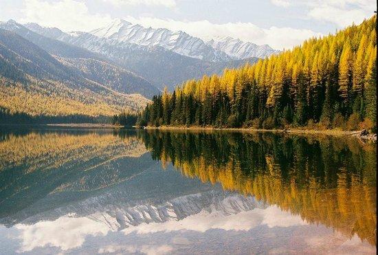 Lake Stanton In Fall Photo De Parc National De Glacier