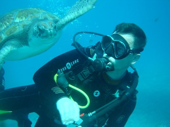 Easy Divers: they are so friendly