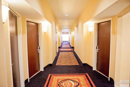 Comfort Suites: Hallway