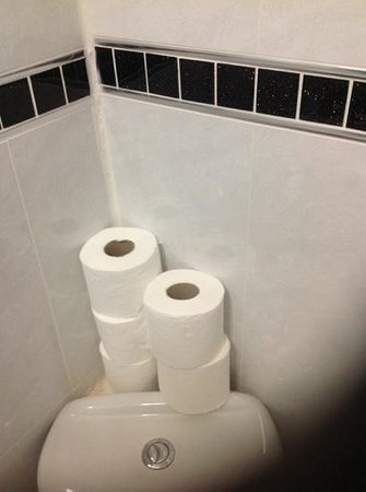 Royal Guest House 2: Plenty of toilet paper!