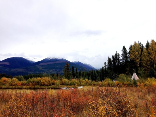 Teepee Meadows Guest Cottages: from the back lake