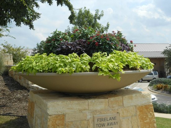 JW Marriott San Antonio Hill Country Resort & Spa : Awesome pot