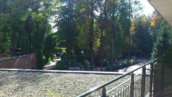 Waldhotel Tannenhäuschen: Blick vom Balkon