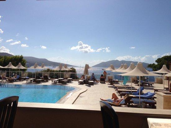 Azka Otel: Havuzun güzelliği ve güzelim bodrum manzarası :))