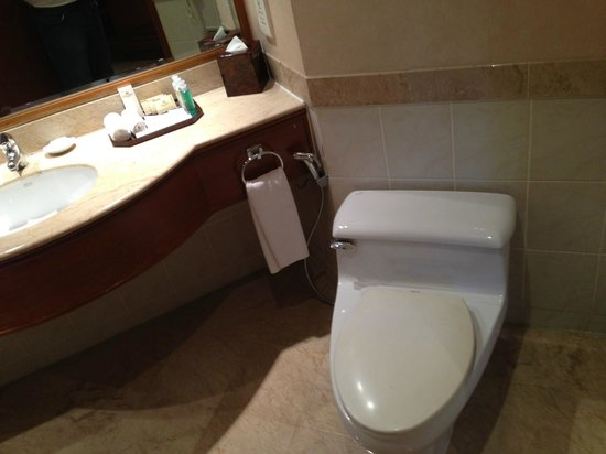 Dorsett Grand Labuan : Yellowed Plastic Toilet Seat