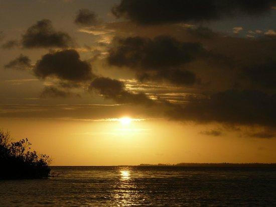 Pole Pole Bungalows : Sunset Cruise
