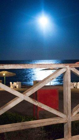 El Sayadin Restaurant: View