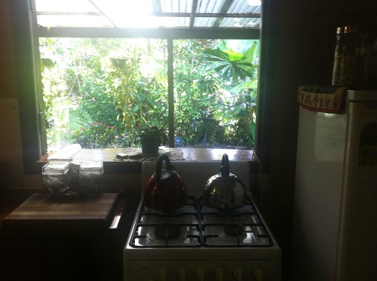 Cape Trib Farmstay B&B: The kitchen pened out the the rain forest