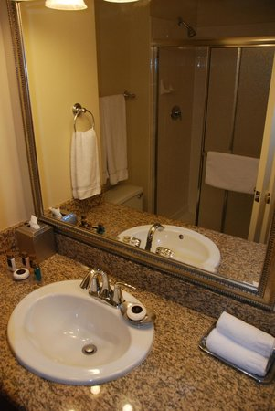 Polo Towers Suites: bathroom