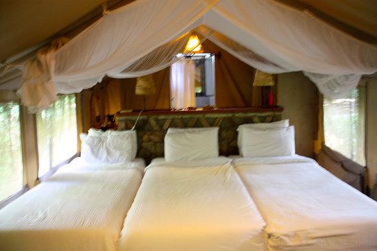Sarova Mara Game Camp: 2 people tent set up for 3