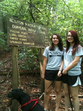 Above the Rest Cabins: Hiking nearby, Benton MacKaye Train