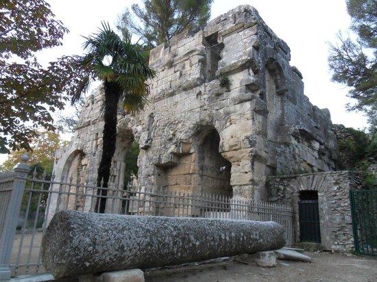 Temple de Diane : Il Tempio di Diana - Esterno
