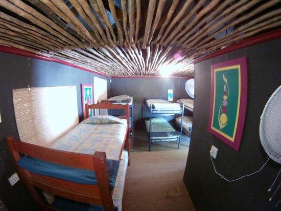 Hazyview Adventure Backpackers : 10 bed dorm