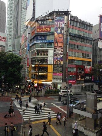 Starbucks Coffee Shibuya Tsutaya: View