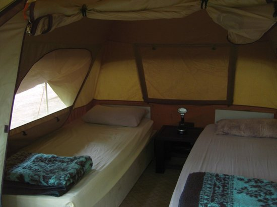 Hazyview Adventure Backpackers: Standard bush dome tent