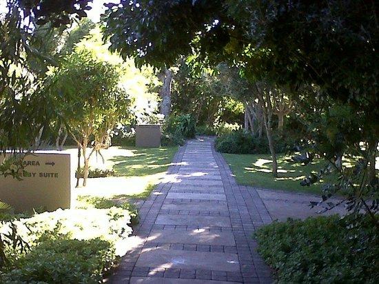 Prana Lodge: Beautiful grounds