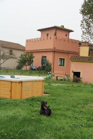 Fattoria Santa Lucia le Tagliate: La casa donde están los apartamentos