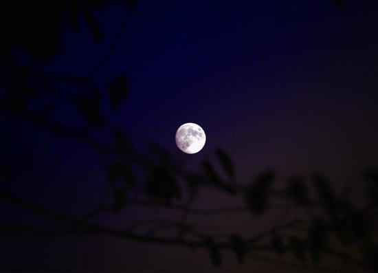 Fattoria Santa Lucia le Tagliate: La luna toscana