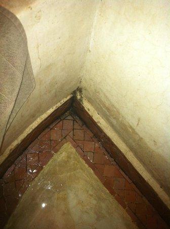 riad el grably : Bac de douche de notre chambre