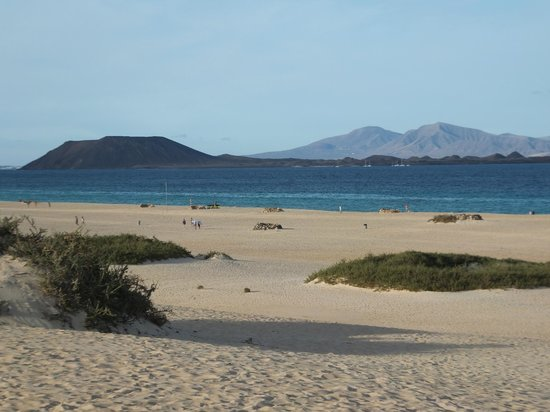 Fuerteventura, Spanien: Corralejo,canary islands