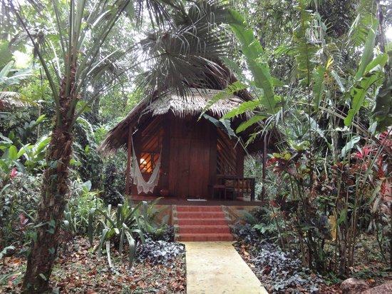 Hotel Shawandha Lodge: Lodge Bungalow
