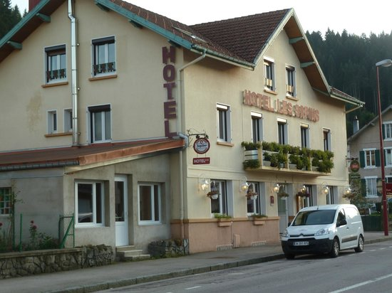 Photo of Hotel Les Sapins Gerardmer