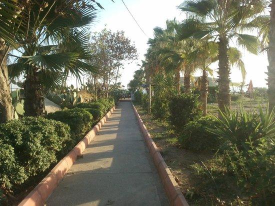 smartline Konaktepe Hotel: plaj